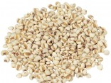 YI YI REN - Job's Tears Seed - Coix Seed - False Pearly Barley - Adlay - Semen Coicis Herb