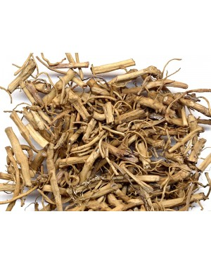 BAI QIAN - Cynanchum Root - Prime White Root - Willow Leaf Swallow Wort Rhizome - Glaucescent Swallow Wort Rhizome - Rhizoma et Radix Cynanchi Stauntonii Herb