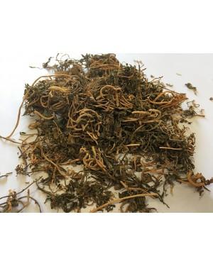 BAN BIAN LIAN - Chinese Lobelia - Herba Lobeliae Chinensis Herb