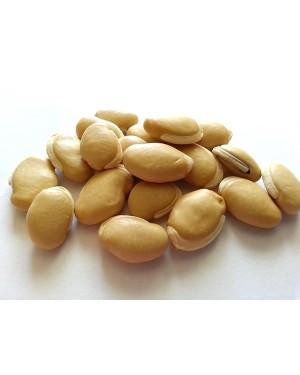 BIAN DOU - Dolichos - Hyacinth Bean - Semen Dolichoris Album- Semen Dolichorus Lablab Herb