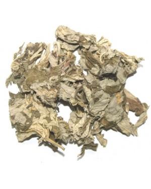 AI YE - Mugwort Leaf - Folium Artemisiae Argyi -  Artemisia - Argyi Wormwood Leaf
