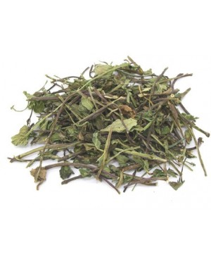 BO HE - Peppermint - Mentha - Field Mint - Asian Fieldmint - Cornmint - Wild Pennyroyal - Wild Mint - Herba Menthae Herb