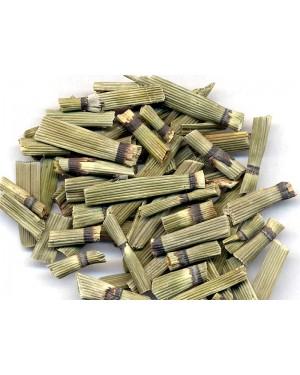 MU ZEI - Scouring Rush - Equisetium - Shave Grass - Horse Tail - Dutch Rushes - Herba Equiseti Hiemalis Herb
