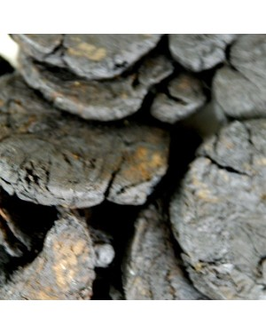SHU DI HUANG - Prepared Rehmannia Root - Radix Rehmanniae Praeparata - Cooked (Baked) Rehmannia Root - Prepared Chinese Foxglove Root